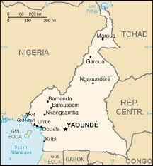 Le Cameroun n'est pas à l'abri d'une crise humanitaire